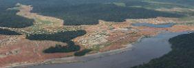Entwaldete Flächen in Brasilien: In 25 Jahren wurden weltweit mehr als 120 Millionen Hektar Wald abgeholzt.