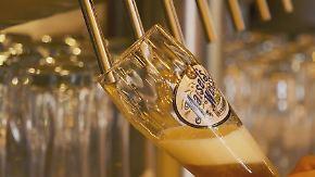 """""""Hidden Champion"""" 2017: Brauerei Gebr. Maisel KG"""