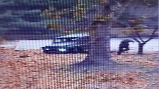 Auf dem Video ist zu sehen, wie der nordkoreanische Überläufer zu Fuß weiter flüchtet, nachdem sein Jeep stecken geblieben war. Kurz darauf verletzen ihn die Schüsse seiner Kameraden schwer.