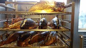 In Kepplers Räucherei duftet es nach Buchenholzrauch: Oben geräucherter Lachs, darunter Dorsch und Hecht.