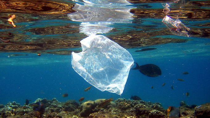 Massenhaft Plastiktüten schwimmen im Meer.