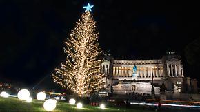 """""""Ich habe mehr Follower als Zweige"""": """"Räudiger"""" Weihnachtsbaum twittert aus Rom"""