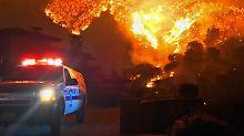 Flammeninferno in Kalifornien: Waldbrände töten Feuerwehrmann