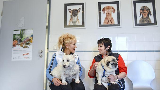 In der Abspeck-Sprechstunde in München sollen Haustierhalter nachlernen.