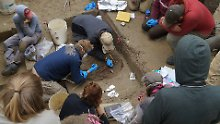 Skelette von zwei Kleinkindern: Dritte Urpopulation Amerikas entdeckt