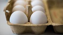 Eine 10er-Packung Eier aus Bodenhaltung wird 20 Cent teurer.
