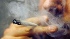 Boom in den USA: Deutsche Kripo fordert Legalisierung von Marihuana