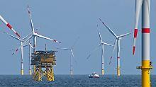 Politik und Naturschutz im Zwist: So groß werden die Nordsee-Windparks