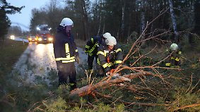 """Hohe Sachschäden: """"Friederike"""" hinterlässt eine Spur der Zerstörung"""