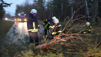 """Schäden in Milliardenhöhe: """"Friederike"""" hinterlässt eine Spur der Zerstörung"""