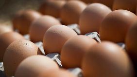 Massentierhaltung statt Bauernhof: Bio ist auch nicht das Gelbe vom Ei