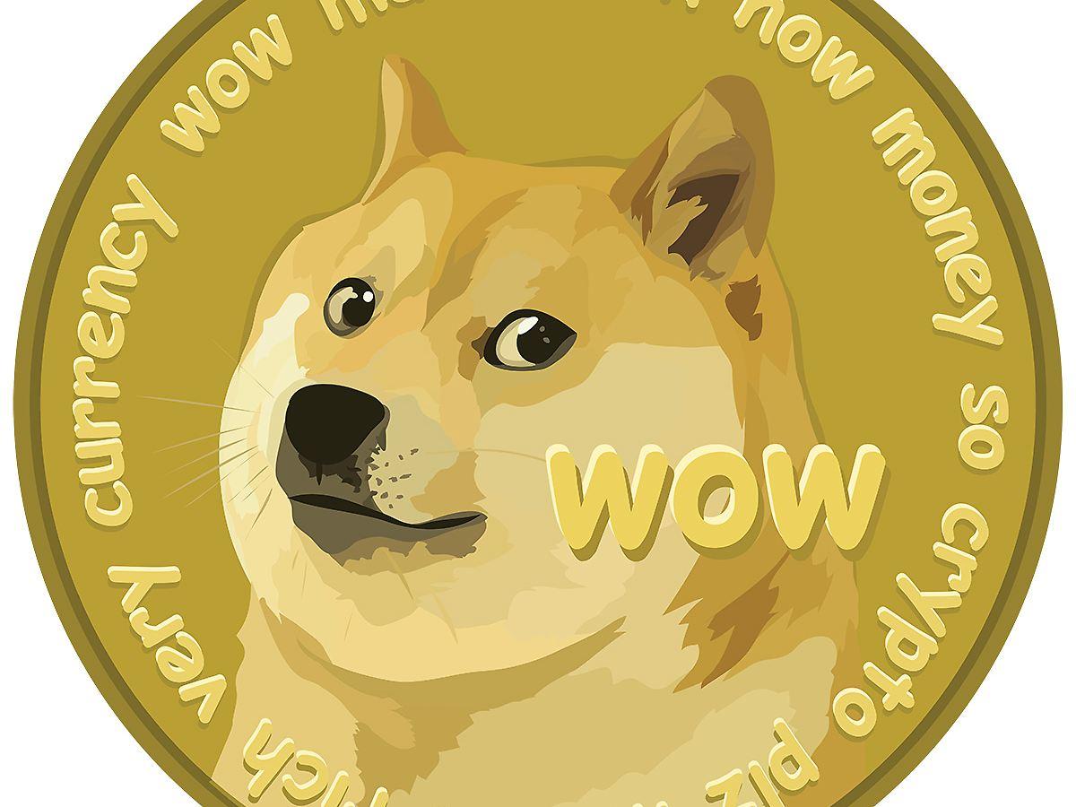 Der Kauf von Dogecoin mit Geldbeschaffung hätte Ihnen über 500000 US-Dollar eingebracht