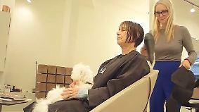 """Waschen, schneiden, streicheln: Londoner Geschäftsleute entdecken Hunde als """"PR-Gurus"""""""