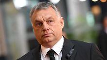 """""""Testwahl"""" in Ungarn: Wichtiger Wahlkreis wählt Orban-Gegner"""