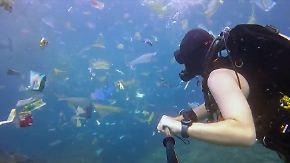 Eine Lkw-Ladung pro Minute: Taucher dokumentiert Vermüllung der Meere