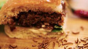 Startup News: Insektenburger