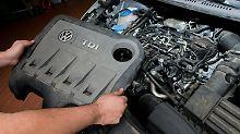 Umweltverbände fordern auch Hardware-Nachrüstungen.