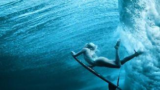"""Wunderschön und schützenswert: """"Ocean Film Tour"""" zeigt die faszinierende Welt der Meere"""