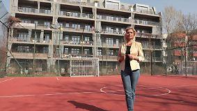 Ratgeber - Bauen & Wohnen: Thema u.a.: Mit der Baugruppe ins Eigenheim