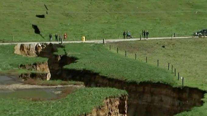 Trügerischer Untergrund: Der Boden unter den neuseeländischen Weiden bei Rotorua gibt plötzlich nach (TV-Standbild).