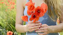 Alles Gute zum Muttertag: Ist Blumenpflücken im Park verboten?