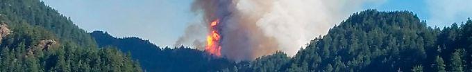 Der Tag: 09:43 15-jähriger Brandstifter soll Millionenstrafe zahlen