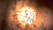 Bei Ertragsverlust: Flüssigkeit von Solarthermieanlage prüfen