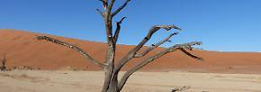 Unwirtlich und besonders schön: Gesichter der Wüsten
