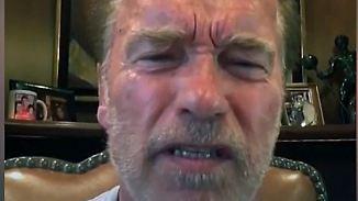 """""""Sah aus wie eine weiche Nudel"""": Schwarzenegger schießt gegen Trump"""