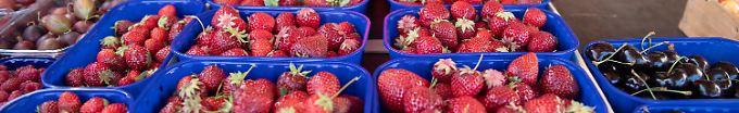 Der Tag: 11:39 Bilderbuchsommer beschert uns mehr Erdbeeren