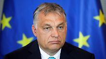 Migration als Wahlkampfthema: Orban träumt von einem rechten Europa