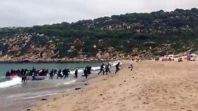 Regierung fordert europäische Lösung: Flüchtlinge landen in spanischem Surferparadies