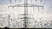 Druck erhöht: Altmaier will Europas bestes Stromnetz