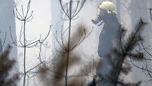 Großeinsatz südlich von Berlin: Feuerwehrleute verletzen sich bei Waldbrand