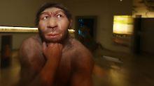 Ökologischer Stress: Neandertaler starben wegen Kältephasen aus