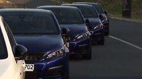 Löwenbändiger am Bilster Berg: Peugeot Sport Club geht im 308 GTi auf Kurvenjagd
