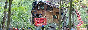 Gericht lehnt Räumungsstopp ab: Kampf um Hambacher Forst wird wohl Wochen dauern