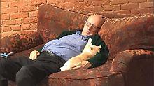 Nickerchen im Tierheim: Katzen-Opa begeistert das Internet