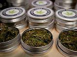 Cannabis berauscht die Börse: Diese Aktien machen high