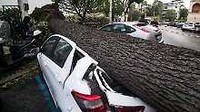 Zahl der Sturmtoten steigt: Südeuropa versinkt im Wetterchaos