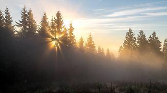 Nachts dichter Nebel und Glätte: Donnerstag wird verbreitet freundlich