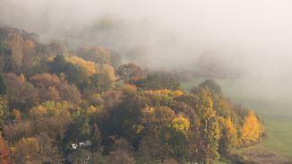 Nebel auf dem Rückzug: Sonne boxt sich durch