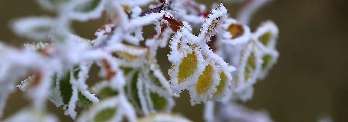 Die Wetterwoche im Schnellcheck: Der Winter schickt einen ersten Gruß