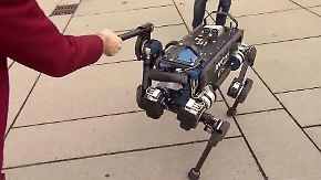 """""""Kann der auch Kaffee machen?"""": Roboterhund orientiert sich selbstständig"""