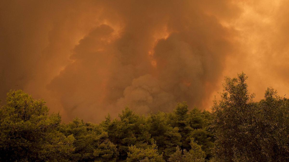 Wie sehr schaden Flächenbrände dem Klima?