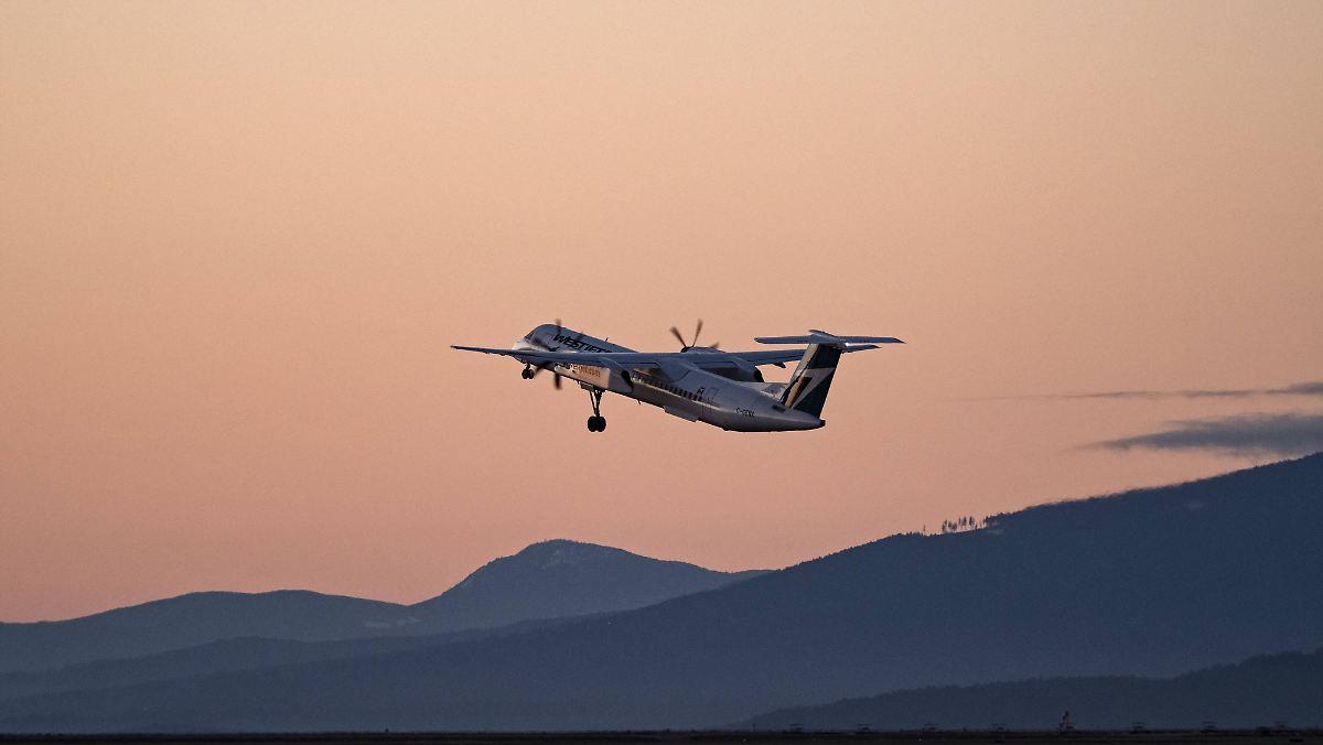 Flugzeug kracht bei Landung mit Gnus zusammen