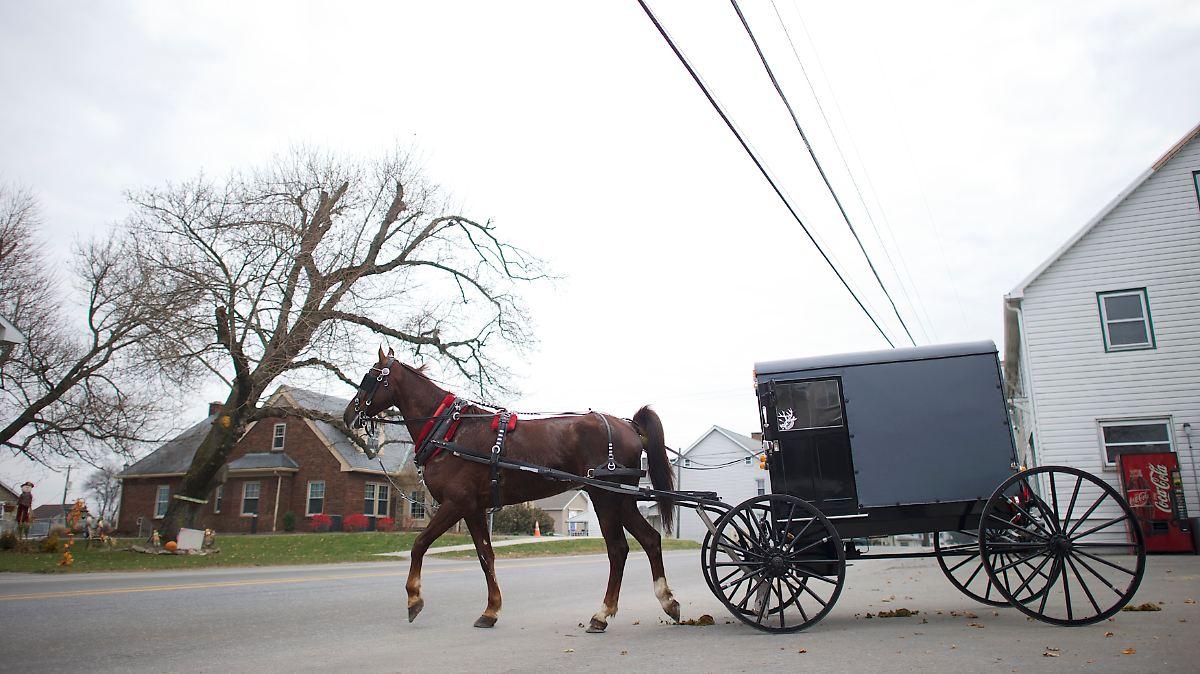 Amische betrinken sich in Pferdekutsche
