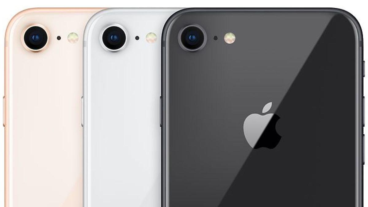 Bänder für iPhone SE 2 laufen an