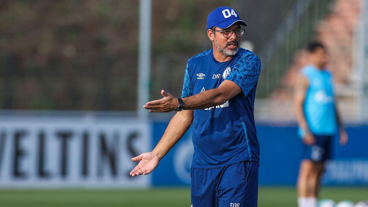 Droht Schalke 04 die nächste Horror-Saison?