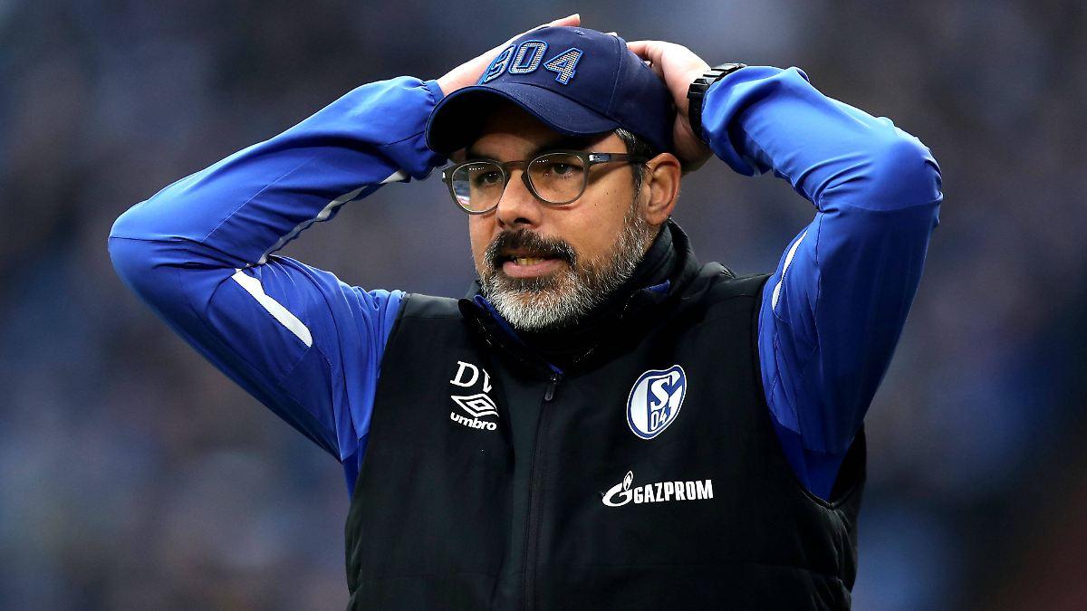 Wagner warnt vor Schalke-Abstieg: